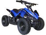 mototec-24v-mini-quad-v2-blue