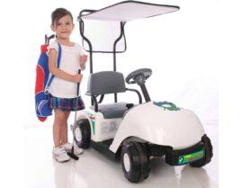 NPL Junior Golf Cart 6v_5