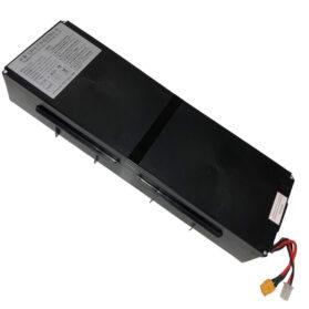 MotoTec Free Ride 48v 600w Lithium Battery